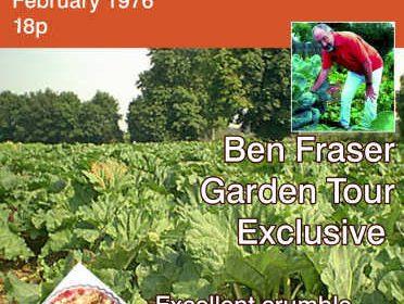 Rhubarb Grower